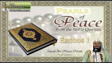 Pearls Of Peace by Mufti Ismail Menk